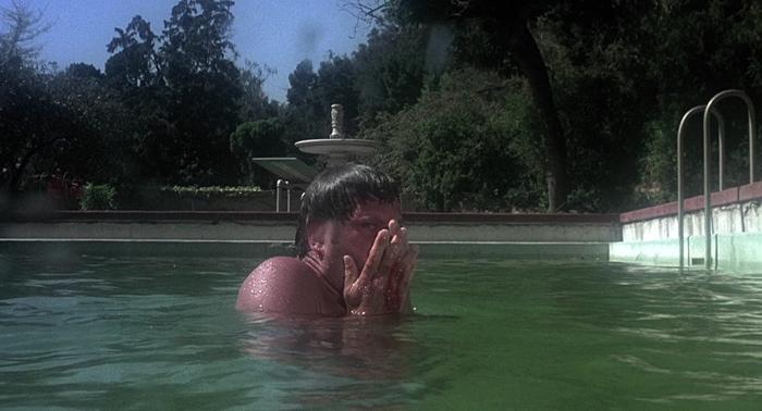 Ben in teh pool scared in Burnt Offerings 1976